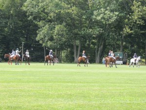Polo field with riders
